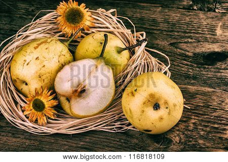 Vintage Still Life Pear Fruit