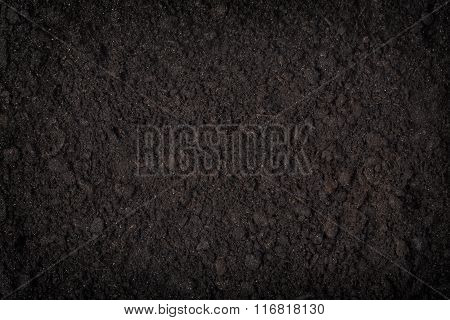 Close Up Of Black Soil