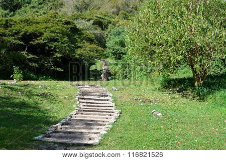 Steps Leading To The Pyramids Of The Archaeological Site Of Chinkultic In Chiapas, Mexico