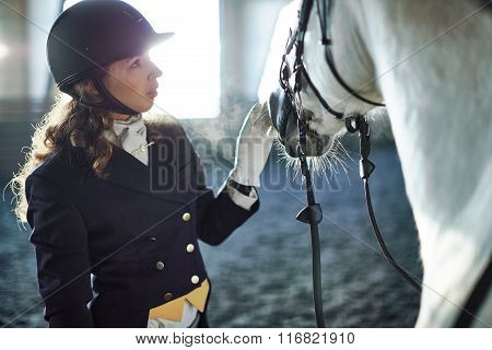 Woman fixing harness on a horse