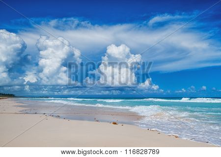 Beautiful Day On A Tropical Beach
