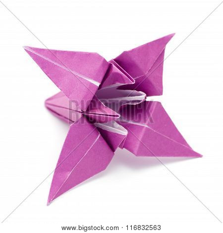 Origami Paper Lily