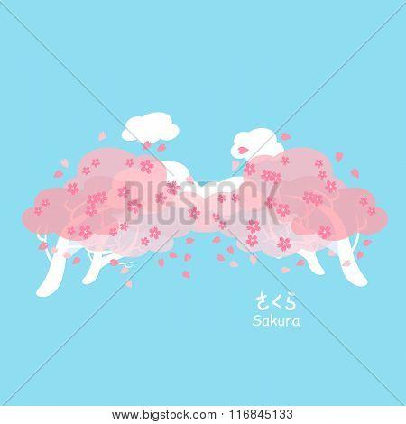 Sakura And Cherry Blossom