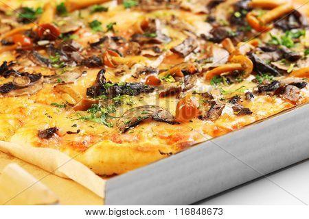 Tasty fresh pizza in carton box, close up