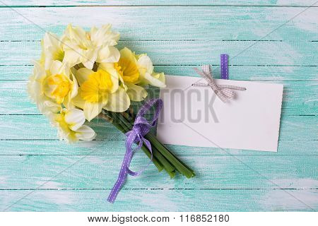 Spring yellow narcissus flowers and empty tag