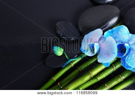 Beautiful spa composition with blue orchid, bamboo and stones