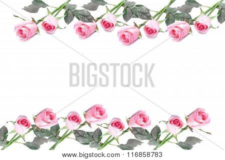 Frame Made Of Pink Roses Flower Isolated