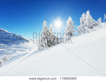 Beautiful winter slope in the mountains
