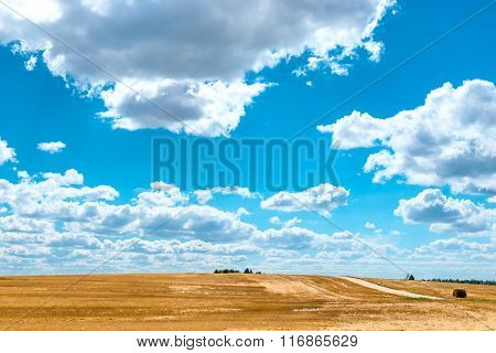 Yellow Field And Very Beautiful Clouds On A Sunny Day