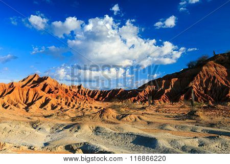 big cactuses in red desert, tatacoa desert, columbia, latin america, clouds and sand, red sand