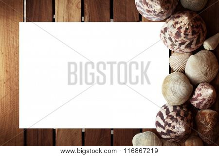 White blank paper with seashells and grunge wooden planks