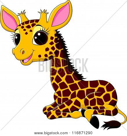 Cartoon funny giraffe sitting isolated on white background
