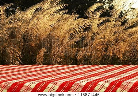 Outdoor Picnic Background and Picnic Table with Red Tablecloth.