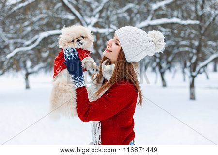 Young Beautiful Girl Holds Little Puppy In His Hands And Playing With Him.