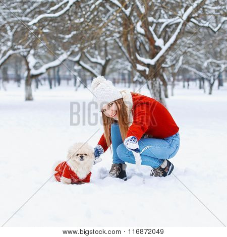 Young Beautiful Woman With Smile Walks A Dog On A White Snowy Background.