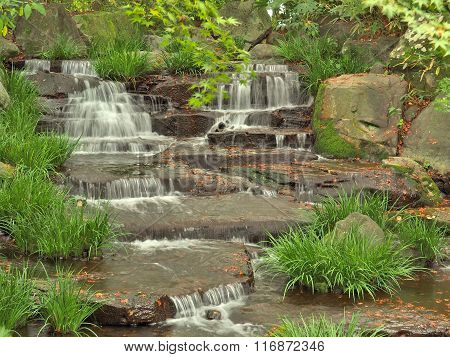 Stream in green forest.