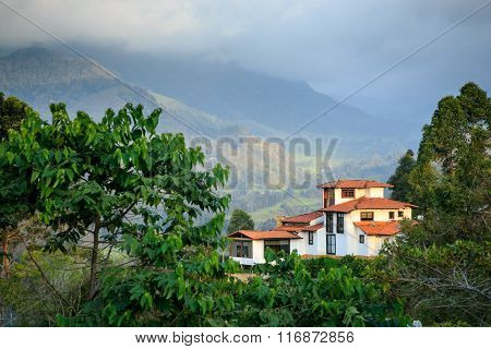 house in the mountains, green jungle in the mountains, colombia, latin america