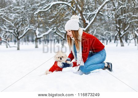 Beautiful Girl With A Cute Dog Walking In A Winter Park.