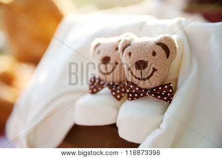 teddy bear, booties