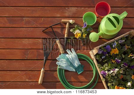 Garden tools on the grass in yard