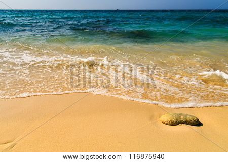 white sand and waves of Caribbean