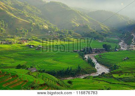 Rice fields on terraced in rainny season at SAPA, Lao Cai, Vietnam.