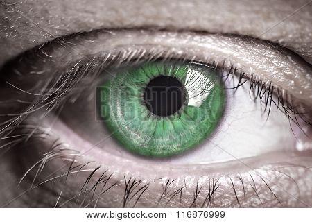 Human green eye.