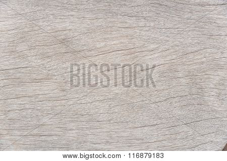 Texture Of Wood Nature For Background Closeup