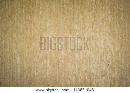 Old Wooden Planks Texture With Fungus For Background