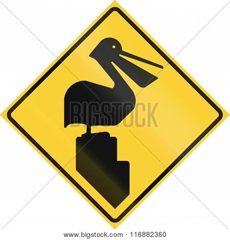 Road Sign Used In The Us State Of Texas - Pelicans