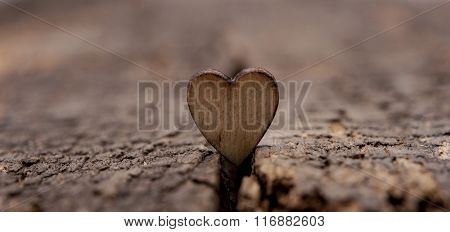 Valentines day greeting card. Heart on the wooden background.