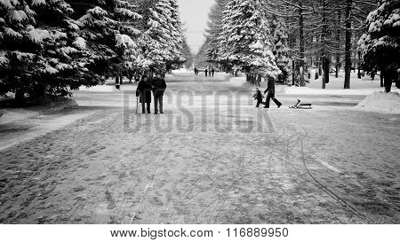 People Walking In A Park At Winter