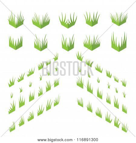 Tufts of grass. Isometric grass on a white background.