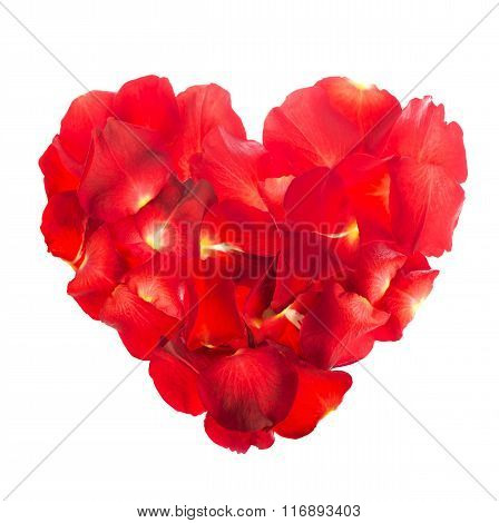 Rose petals are laid out in a heart shape