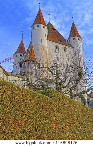 View On Thun Castle And Trees In Switzerland