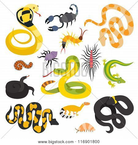 Vector flat snakes and other danger animals collection isolated on white background