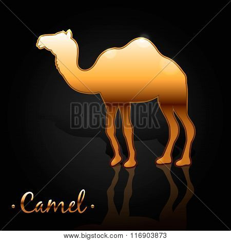 the image of a golden camel