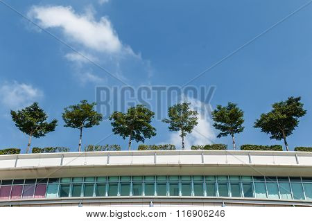 Contemporary Office Building With Trees On The Roof