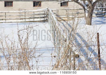 Fence, Snow on Farm