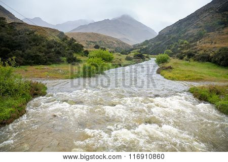 Flooding stream in New Zealand