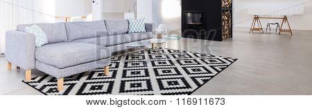 Contemporary Salon With Sofa