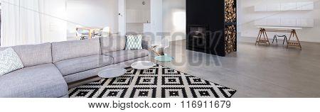 Modern Furnished Living Room