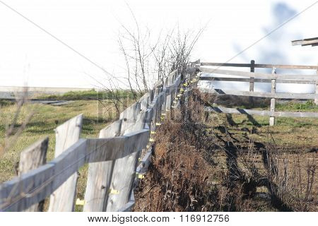 Fence-Wooden