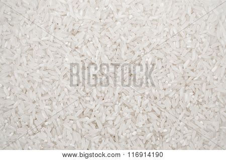 close up shot of the rice background.