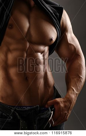 image of a muscular male torso
