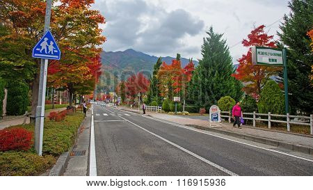 Kawaguchiko Main Street At Autumn