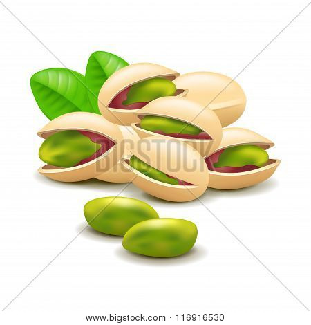 Pistachios Nuts Isolated On White Vector