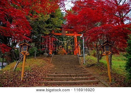 Torii Gate To Chureito Pagoda