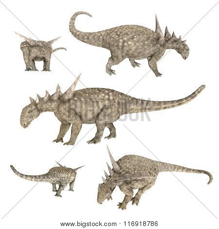 Dinosaur Sauropelta isolated on white background