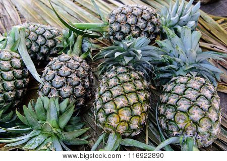 Pineapples (ananases) At Fruit Market